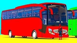 LEARN COLOR BIG BUS and ATV CARS Spiderman Superheroes Cartoon for Kids & Children