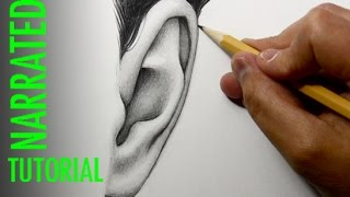 How to Draw Ears [Front View]