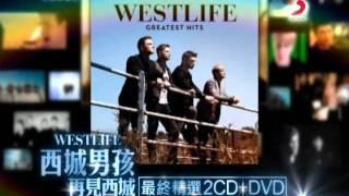 西城男孩《再見西城 最終精選》二合一版冠軍篇