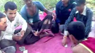 kannda raj movie video andar bahar from syed ali 9972172171