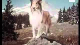 مقدمة مسلسل قديم (Lassie)