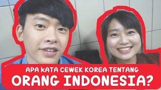 Apa kata CEWEK KOREA tentang ORANG INDONESIA?   Korea Vlog 3   COWOK KOREA