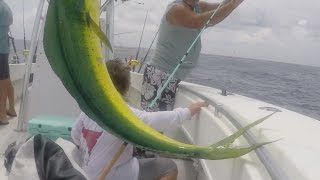 Awesome Jumping footage of Mahi in the Keys