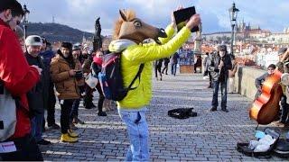 Kůň v centru PRAHY?!
