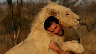 National Geographic Documentary Animals 2015 HD - The Army of The Lions [National Geographic 2015]