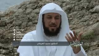 أبئس أهل الدنيا من أهل الجنة !   l د. محمد العريفي