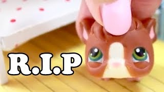 LPS - MY HAMSTER DIED