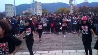 黒ドリ!福井ゲリラダンス