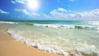 Peaceful shell beach ocean waves
