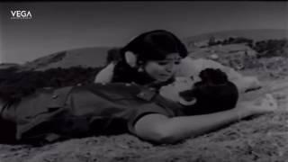 Palavisekam Saiyavo Video Song   Muthana Muthallavo Movie   Tamil Movies