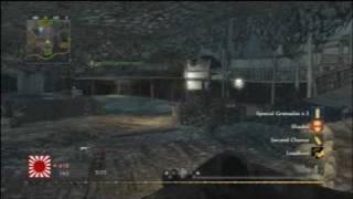 Pyrotoz COD5 Team Deathmatch 39 - Makin