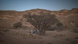 Oman's mesmerising deserts and mountains - life