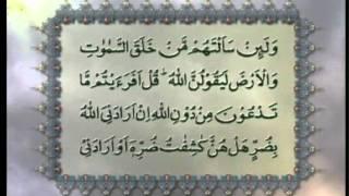 Surah Al-Zumar (Chapter 39) with Urdu translation, Tilawat Holy Quran, Islam Ahmadiyya