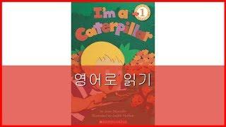 I'm a Caterpillar | 나는 애벌레야 [English]