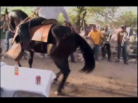 Bailando caballo