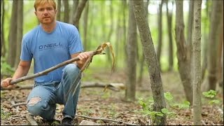 All Primitive Bow-Drill Fire (Start to Finish-no modern materials)