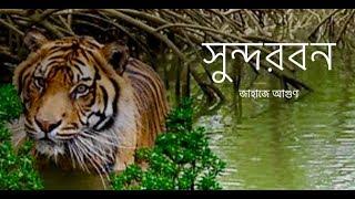সুন্দরবন  ভ্রমণ    Sundarbans Group Tour    Boat On Fire    জাহাজে আগুণ