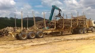 Loading kayu acacia di depo