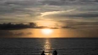 Psycho Shark Review