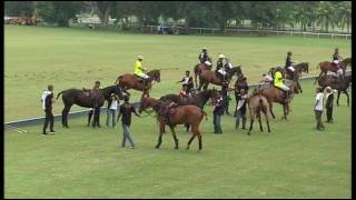 2016 Royal Pahang Classic Subsidiary Final: HLF Polo vs Royal Pahang