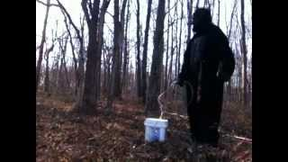 REAL BIGFOOT FOOTAGE FROM VIRGINIA