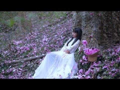 Picking Out Blooming Flowers to Make Aromatic Dew 摘下一朵朵盛放的花,凝结成香喷喷的露——纯露 Liziqi Channel