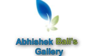 Abhishek Bali's Gallery
