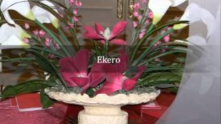 Ekero - Kayamba Africa