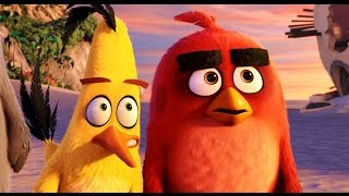 Angry Birds ALL MOVIE CLIPS