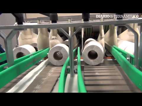 Como é fabricado e para onde vai o papel higiênico