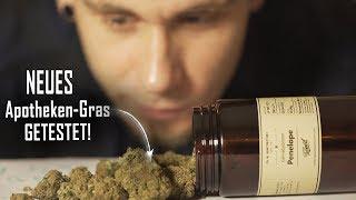 Das NEUE LEGALE Gras im TEST!