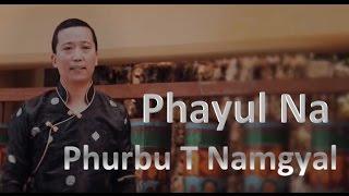 Phurbu T Namgyal 2016 -  Phayul Na