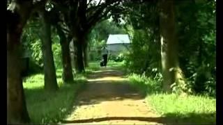 আমার দেখা সবচেয়ে সুন্দর গান।Bangla new song by tahsan