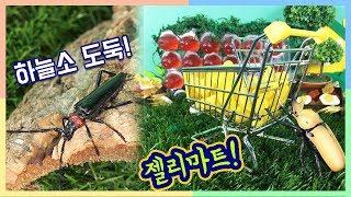 [곤충동화]젤리마트! 하늘소 도둑을 잡아라! _ 에그박사와 곤충친구들