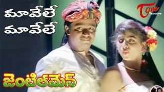 Gentleman Telugu Movie Songs | Maavele Maavele Video Song | Arjun | Madhubala
