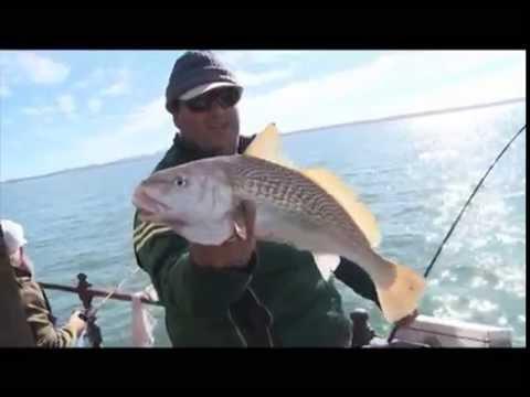 Entrevisiones Pesca en Punta del Este Fishing Uruguay