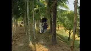 Bangla  talefilm Morolbadi