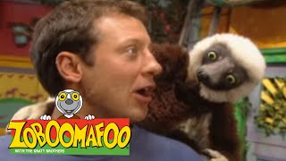 Zoboomafoo 205 - Pop Goes the Tiger (Full Episode)