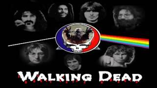 Walking Dead - Fire on the Mountain (Grateful Dead cover).mpg