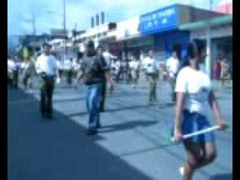 Desfile de Teleton 2008 01