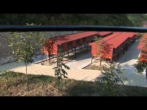 Cea mai tare ferma de iepuri din R.Moldova.mp4