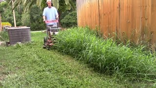 Lawn care vlog #41 New yard, tall grass, clean up!!