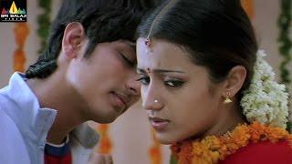 Nuvvostanante Nenoddantana Movie Scenes | Siddharth and Trisha Scene | Sri Balaji Video