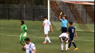 Daniel Arzani football highlights video