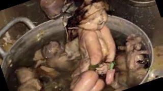 কি ভাবে মৃত মানুষের দেহ থেকে স্যুপ খেয়ে বেচেঁ আছে???!Update news HD