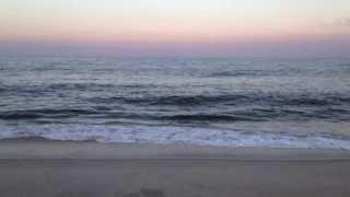 "Duncan Trussell ""I Love the Beach"""