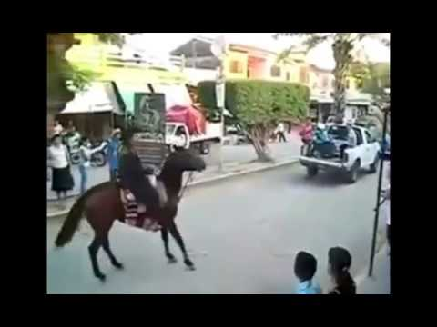 Xxx Mp4 Horse Fuck A Pakistani Girl In His Farm When She Love Him 3gp Sex