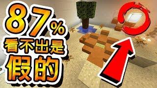 Minecraft 蝦咪 !! 87%的人看不出這是假的 !!   【完結篇】大家來找碴 ft.閃閃