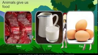 Animals give us Food | Primary school Animated Video | iProf