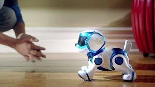 10 ÚTILES ROBOTS QUE TE HARÁN FELIZ